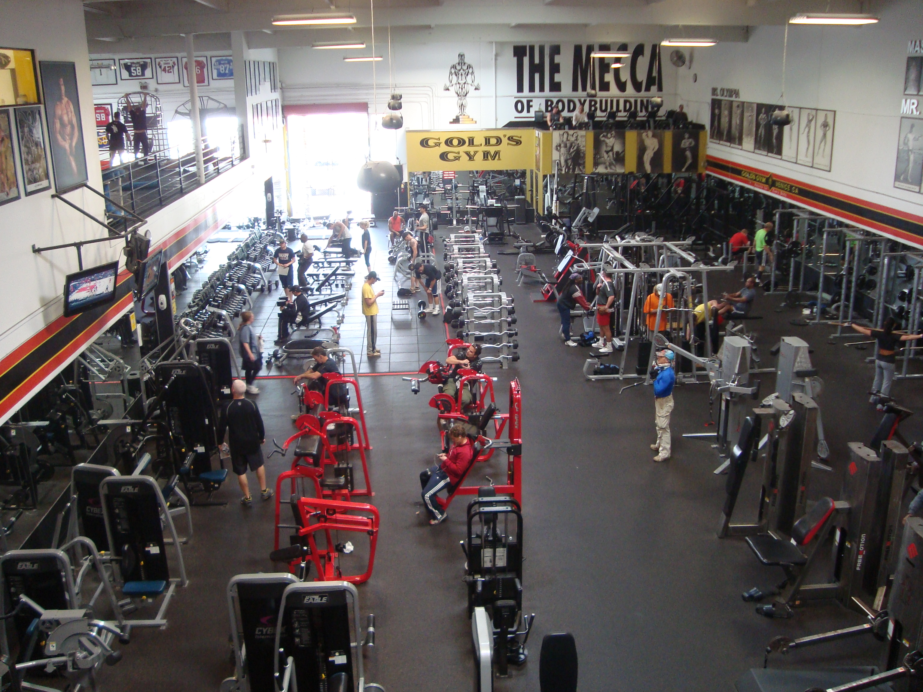 Gold's Gym – Venice, CA: The Mecca of Bodybuilding